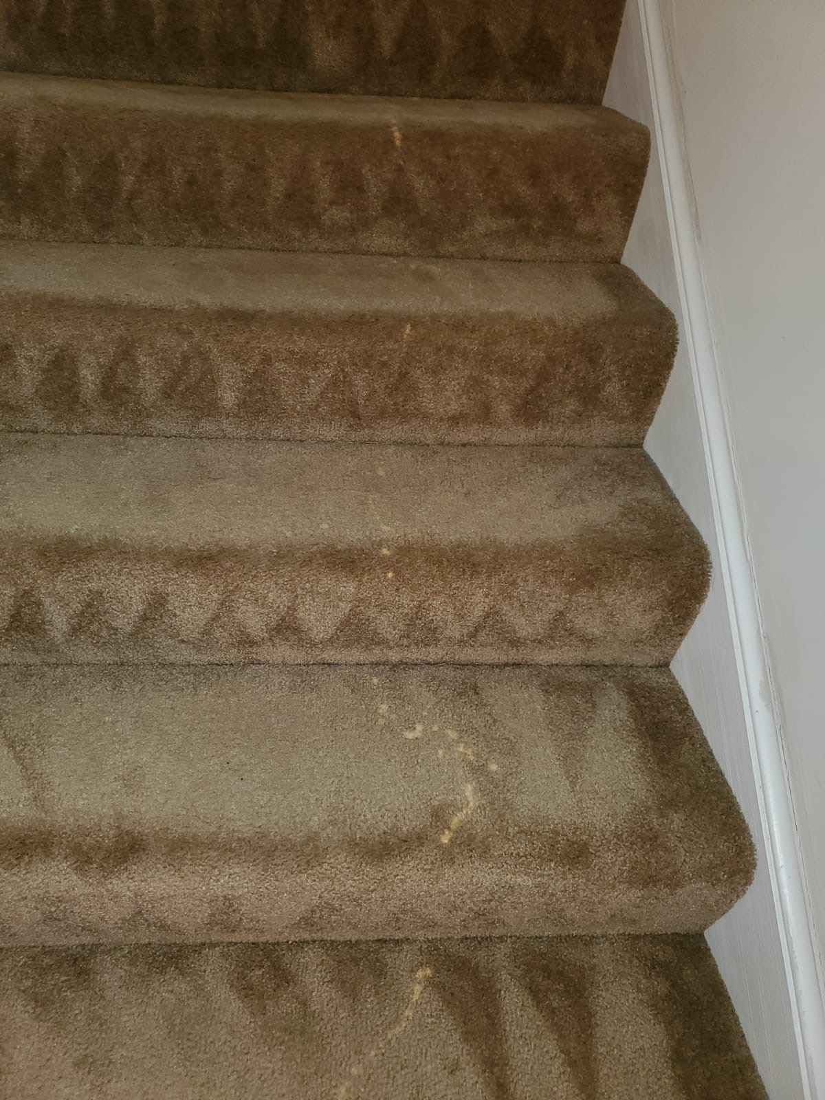Bleach Spot Repair of Rental Property in Manassas, VA