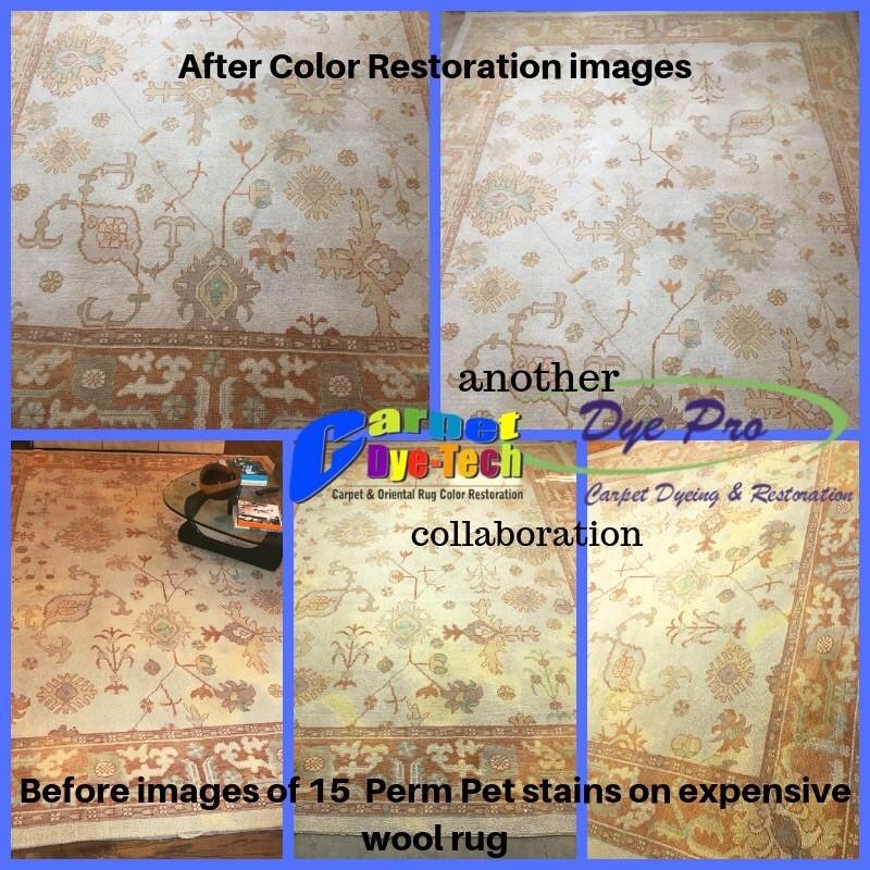 Area Rug Restoration