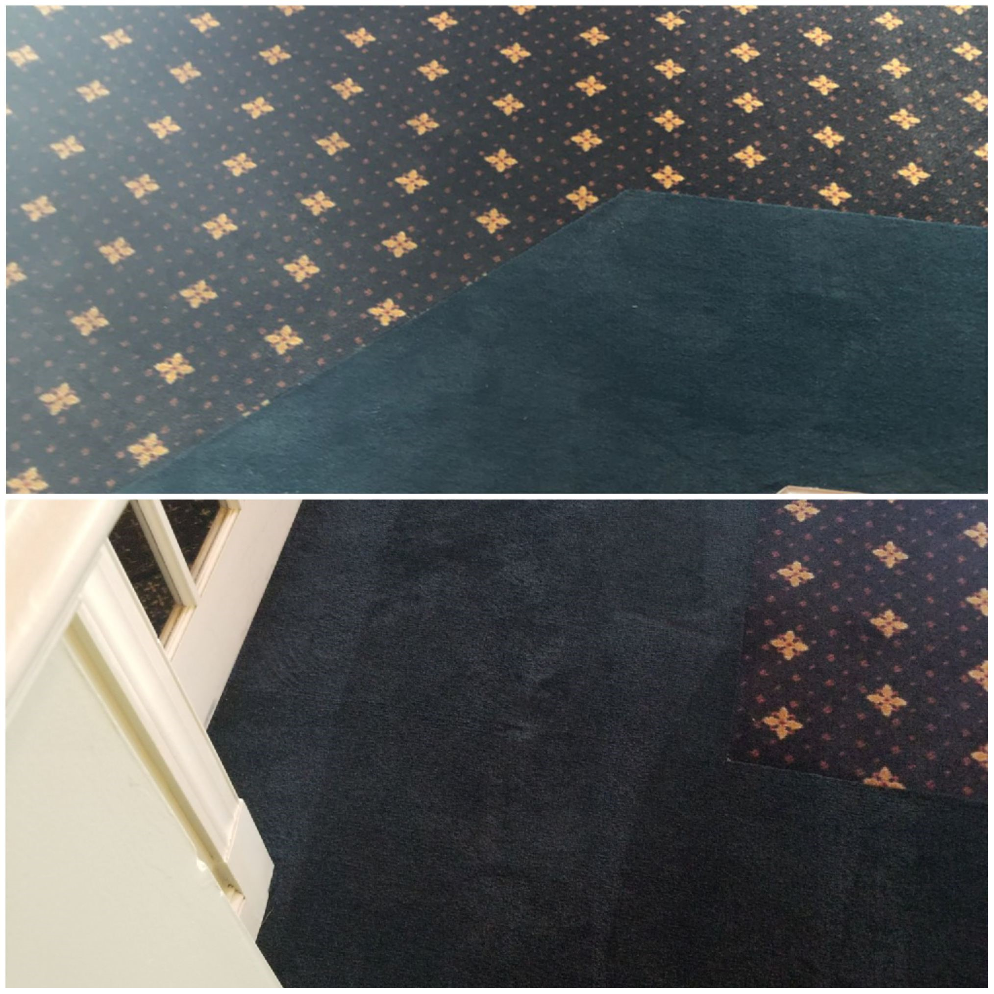 Gallery Dye Pro Carpet Dyeing Amp Restoration Stafford
