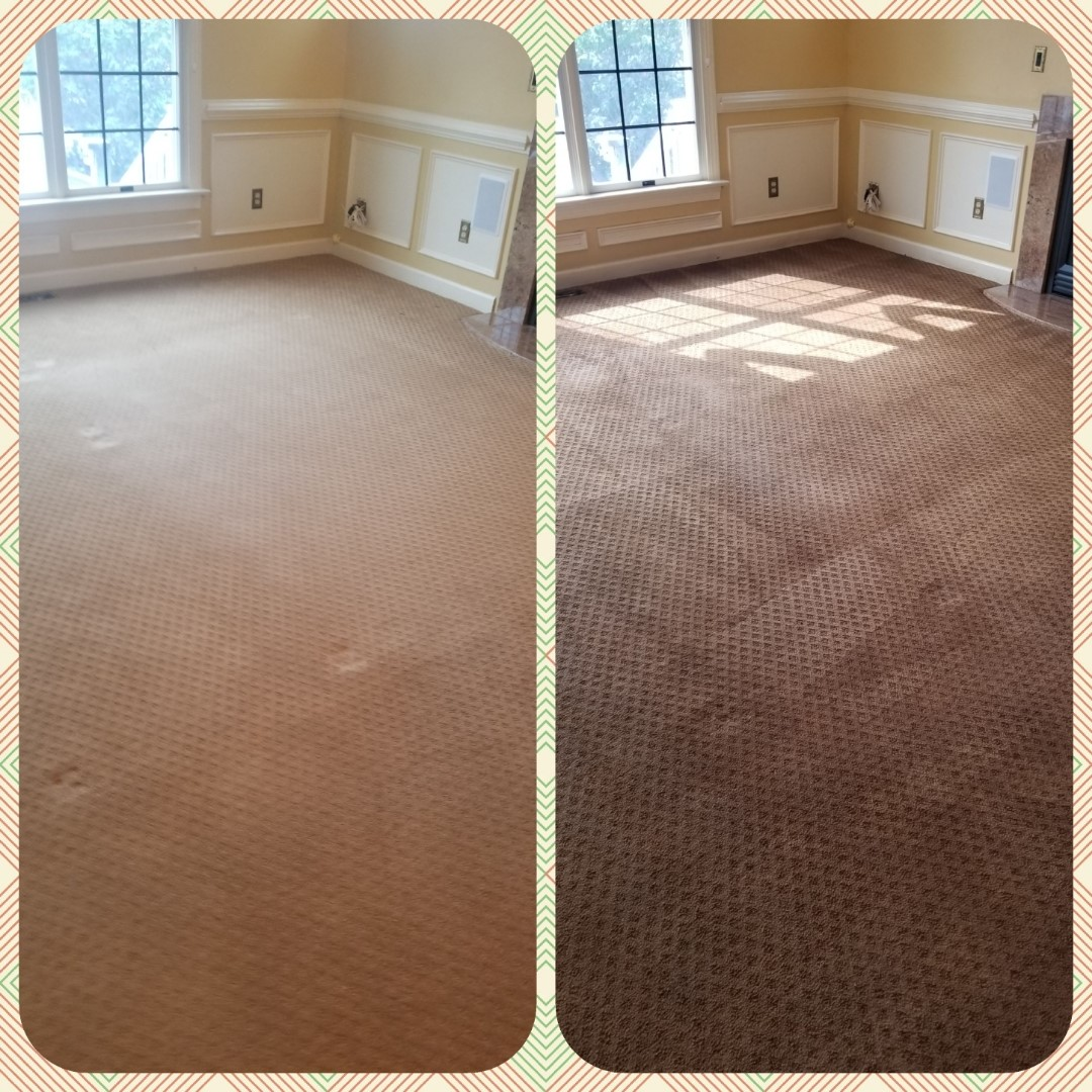 Whole Room Carpet Dyeing in Frederick, MD