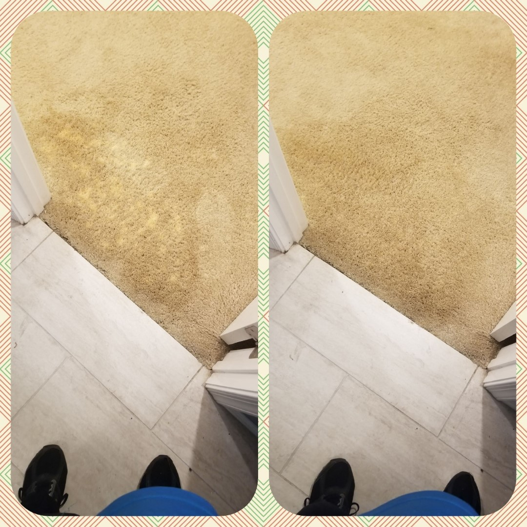 Bleach Spot Repair in Germantown, MD