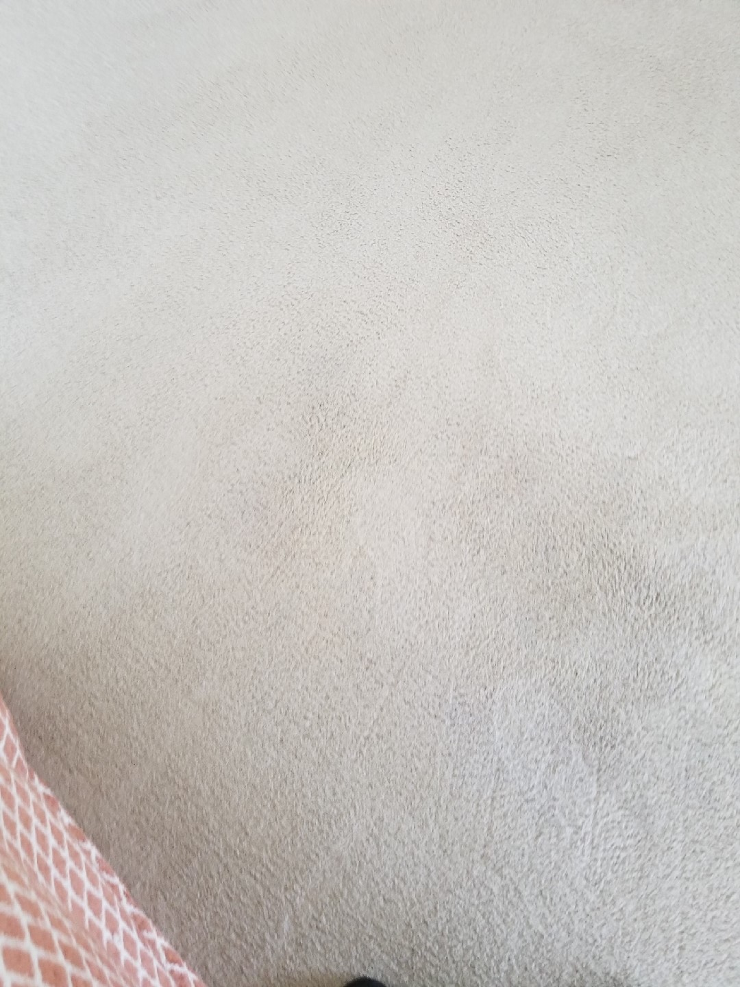 Bleach Spot Repair - Leesburg, VA