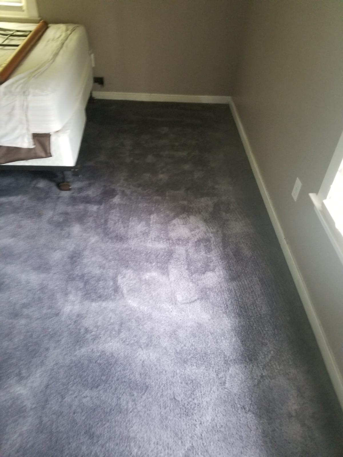 Carpet Color Change in Midlothian, VA