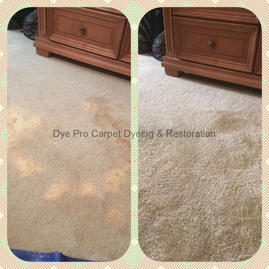 Bleach Spot Removal in Arlington, VA