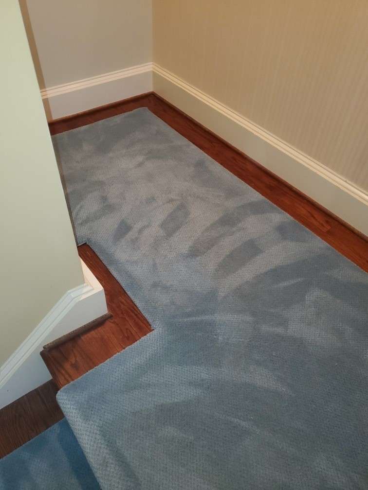 Carpet Stair Runner Color Change in Washington D.C.