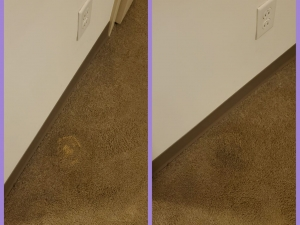 Bleach Spot Repair in Cleveland, OH College Suites