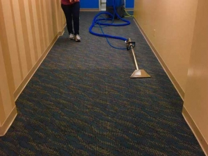 Color Revival Carpet Cleaning