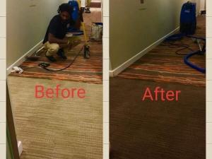 Colorful Carpets Designer Carpet Dyeing in a VA Hotel