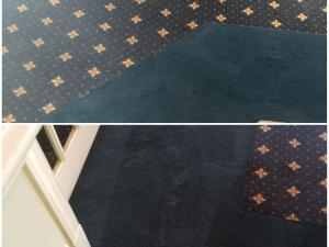 Banquet Room Border Color Change at a Gold Club in Richmond,