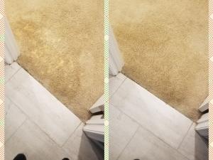 Bleach Spot Repair in Germantown, MD