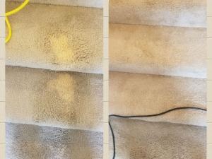 Bleach Spot Removal in Fredericksburg, VA