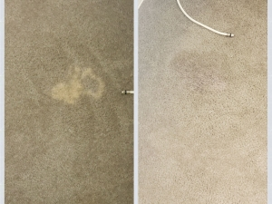 Bleach Spot Repair