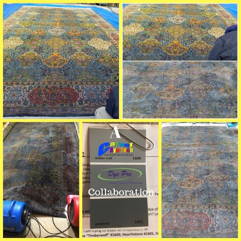 Oriental Persian Amp Antique Area Rug Dyeing Dye Pro